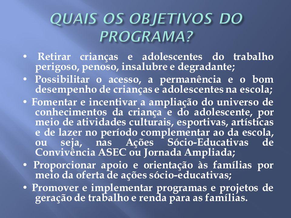 ] QUAIS OS OBJETIVOS DO PROGRAMA